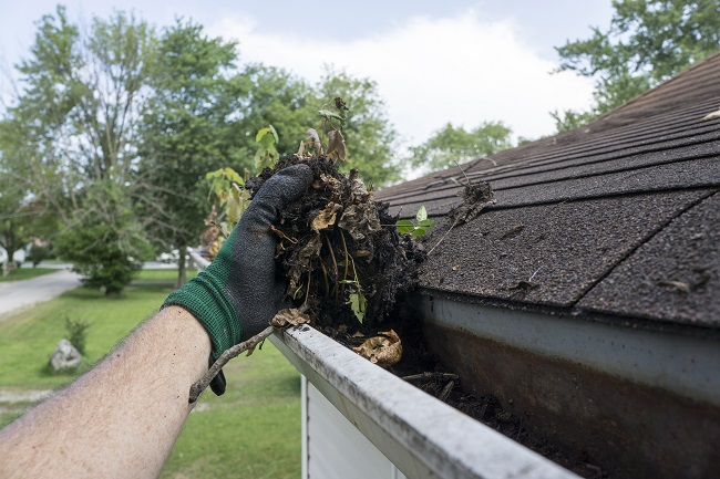 Five Reasons to Leave Gutter Cleaning to The Pros