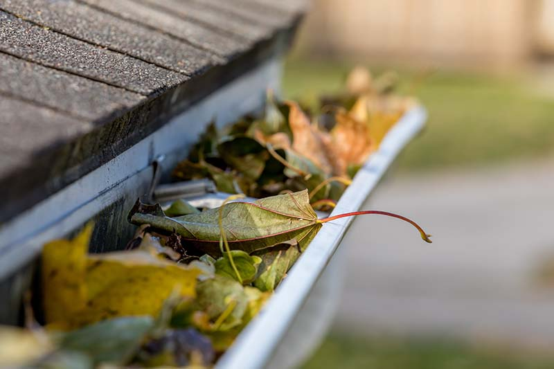 What Problems Do Clogged Gutters Cause?